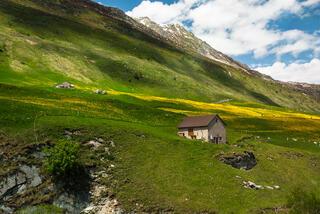 Swiss Tour: Glacier Express Panoramic Train