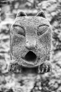 A feline gargoyle with gaping mouth Conchas Chinas, Mexico in black and white.
