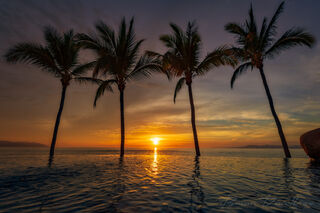 Sunset over an infinity pool and the ocean between four palm trees in Puerto Vallarta, Mexico.