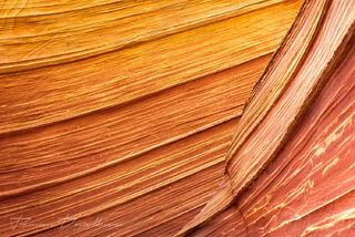 Abstract close-up of The Wave and Vermilion Cliffs National Monument from the Wave Trail.