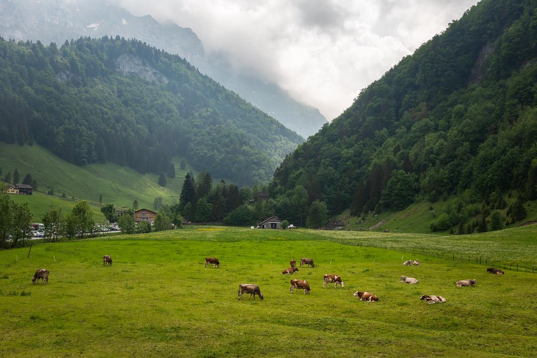The Wasserauen Valley from the Ebenalp gondola, near Appenzell, Switzerland.