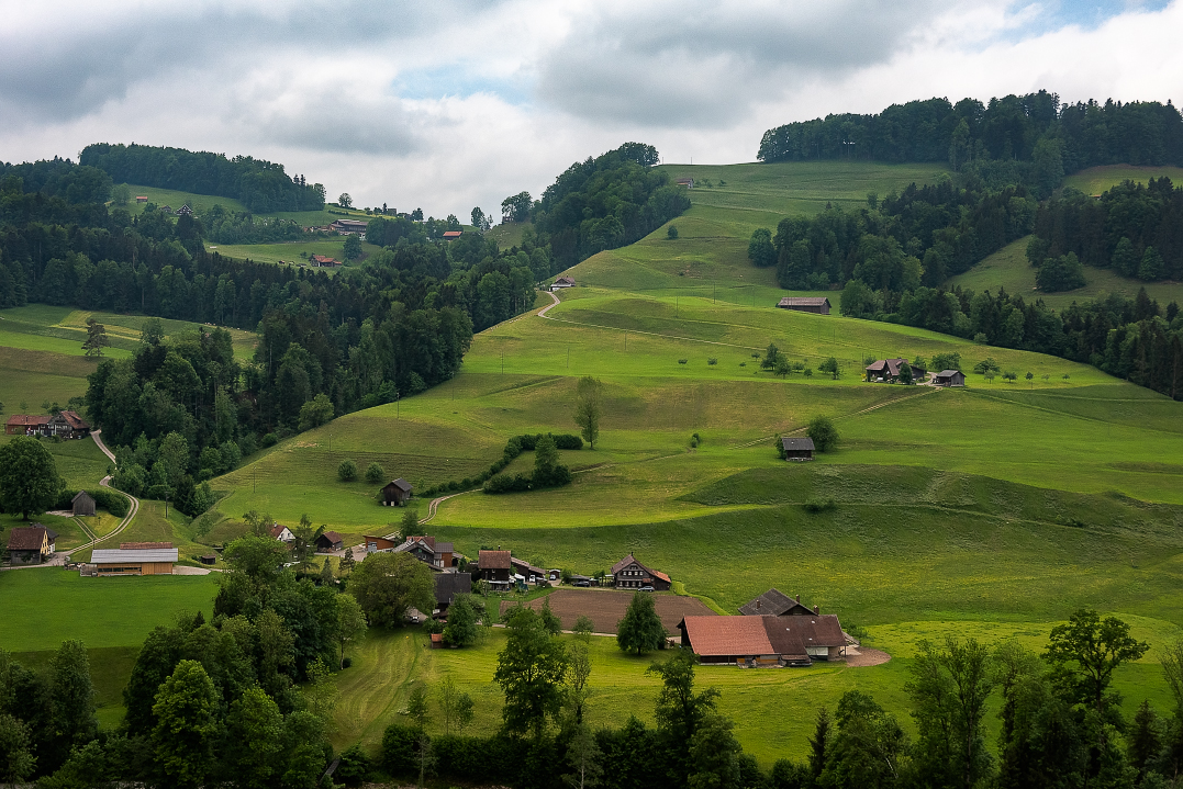 The rolling landscape on the train from St Gallen to Lucerne