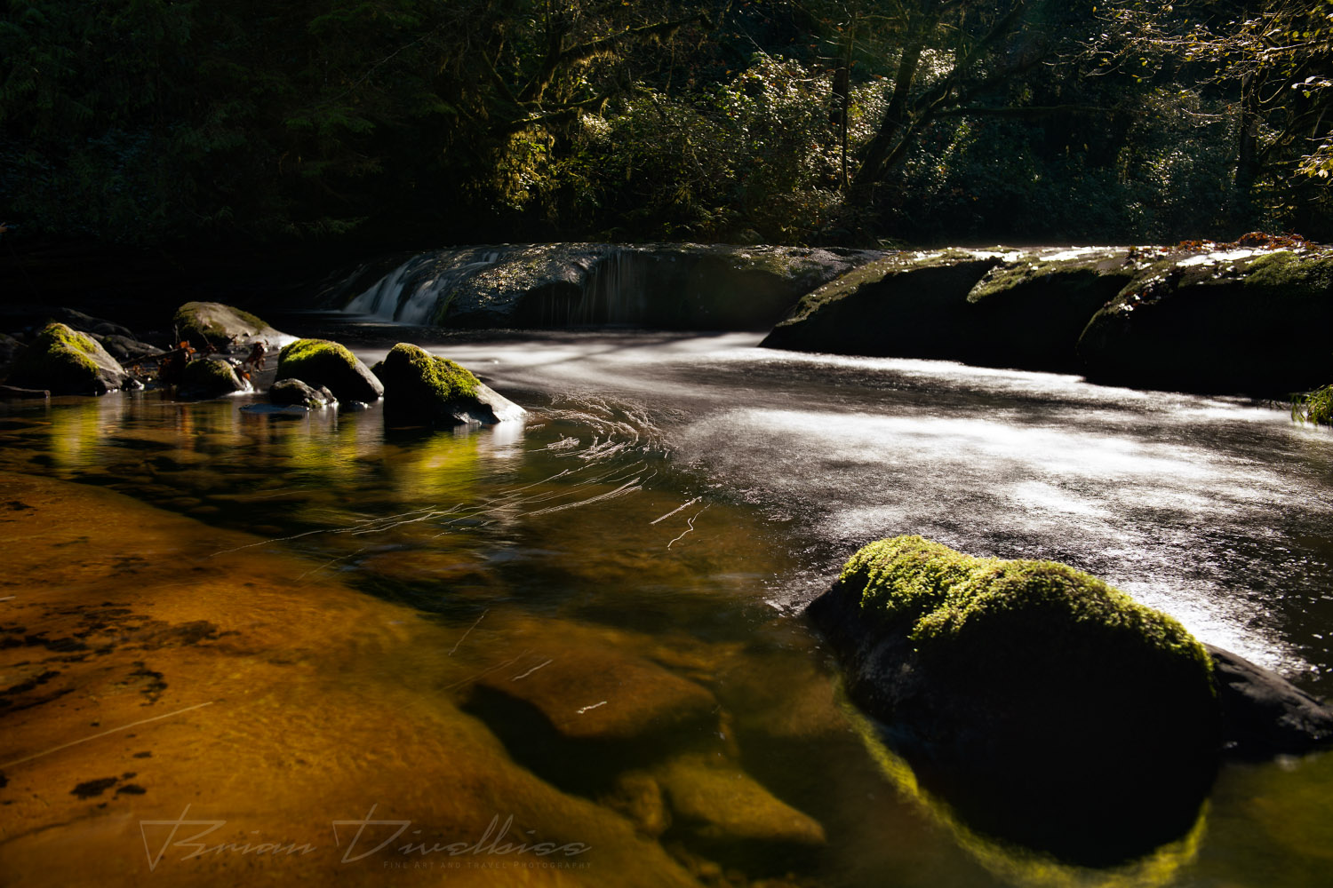 Water rounds a bend of rocks in a sun-dappled stream in Oregon.