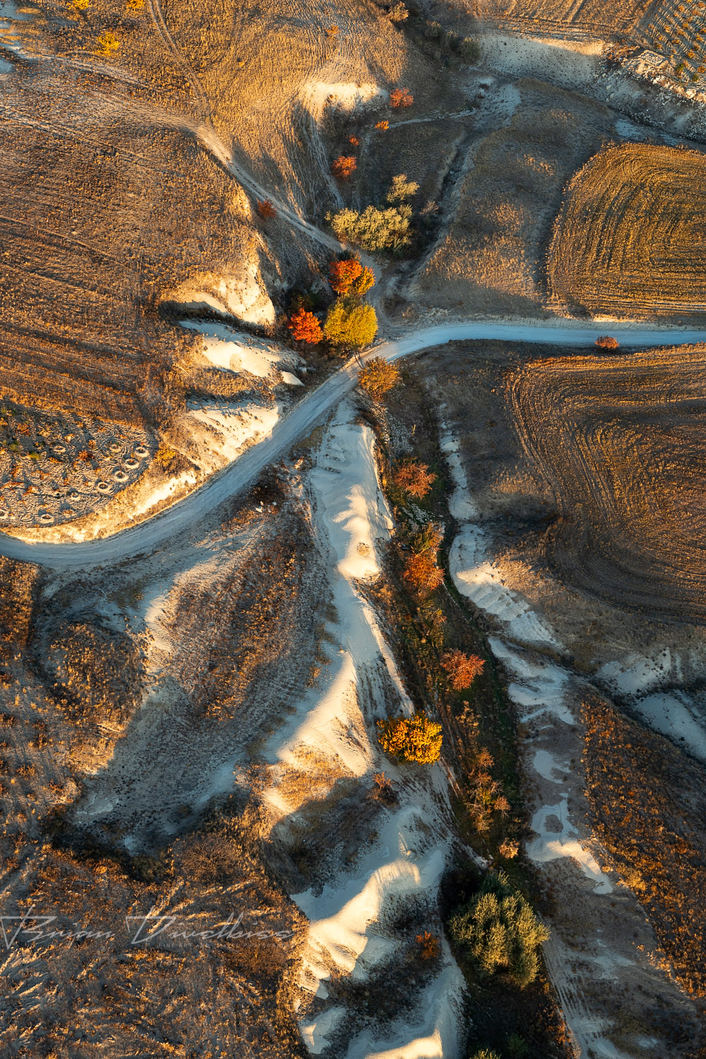 Autumn trees and fields viewed from hot air balloon in Cappadocia, Turkey.