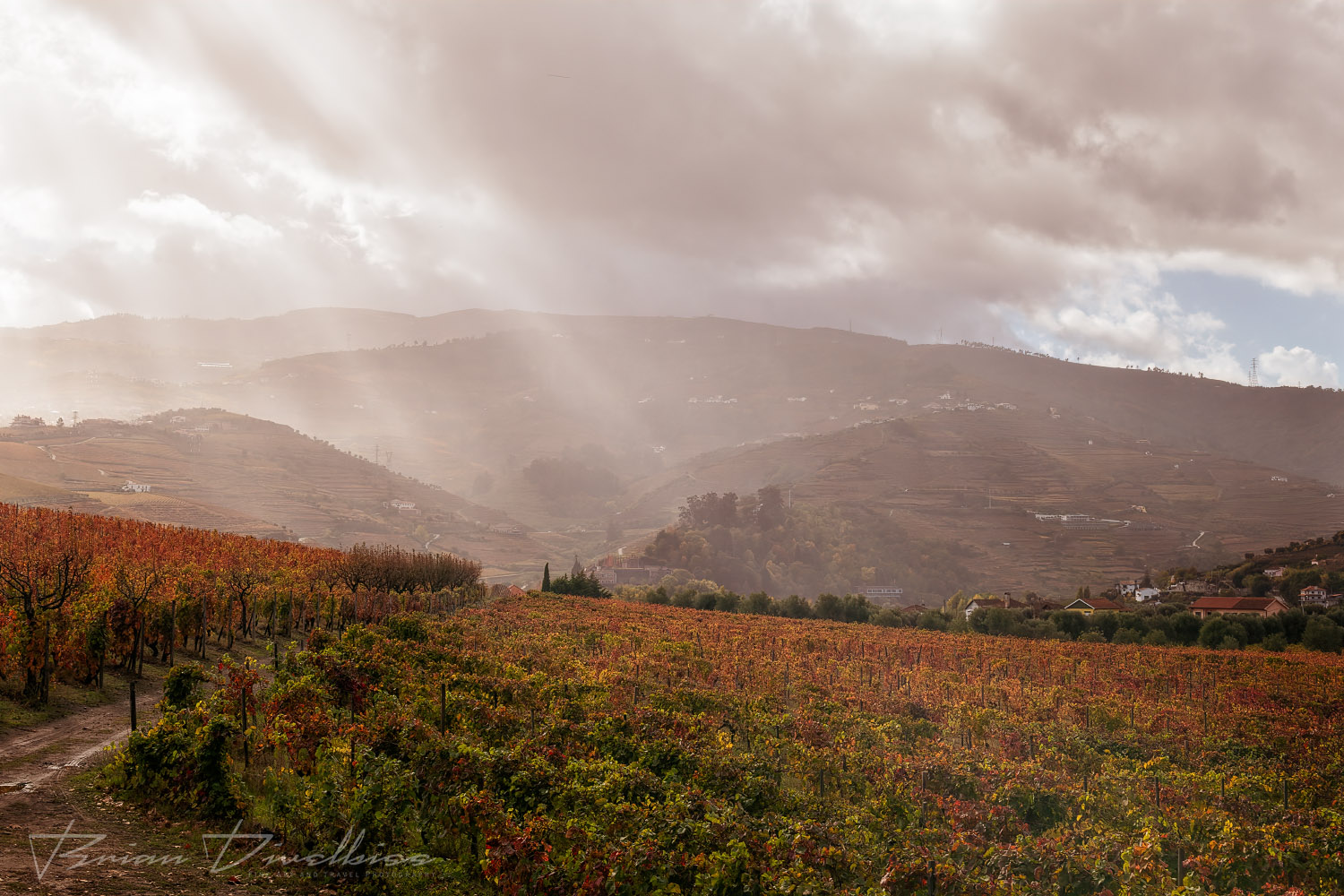Rays of light filter down over Douro Valley at Quinta Da Pacheca in Vila Real, Portugal.