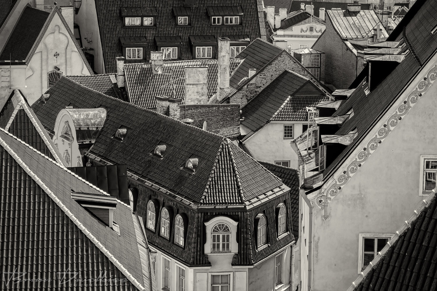 Angled roofs viewed from above in the Lower Old Town of Tallinn, Estonia in black and white.