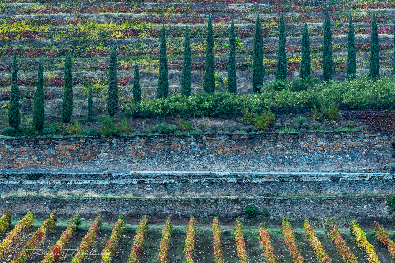 Abstract view of grounds of Six Senses in Douro Valley, Portugal.