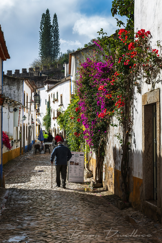 Pedestrians walking below hanging flowers on Rua Josefa D'Obidos in Leiria, Portugal.
